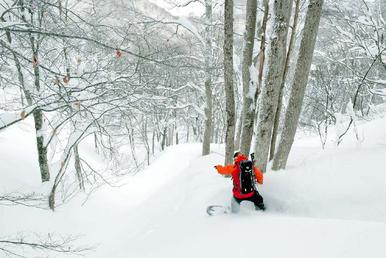 Snowboarder at the Madarao Ski Resort, Japan