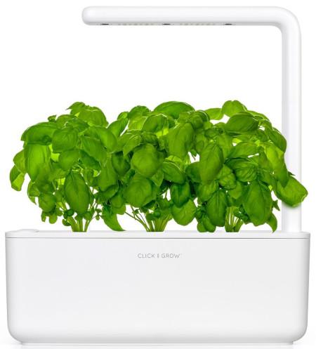 Countertop 3 herb indoor hydroponic garden.