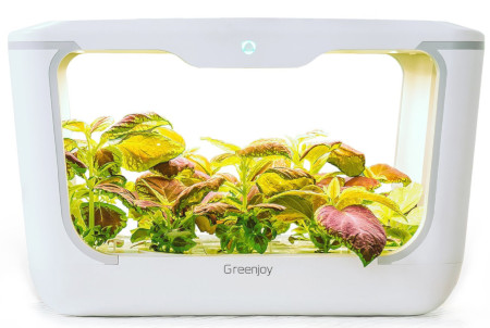 Amazing 15 plant indoor hydroponic herb or plant garden.