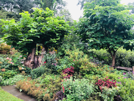 What to do in Ithaca NY - Botanic Gardens