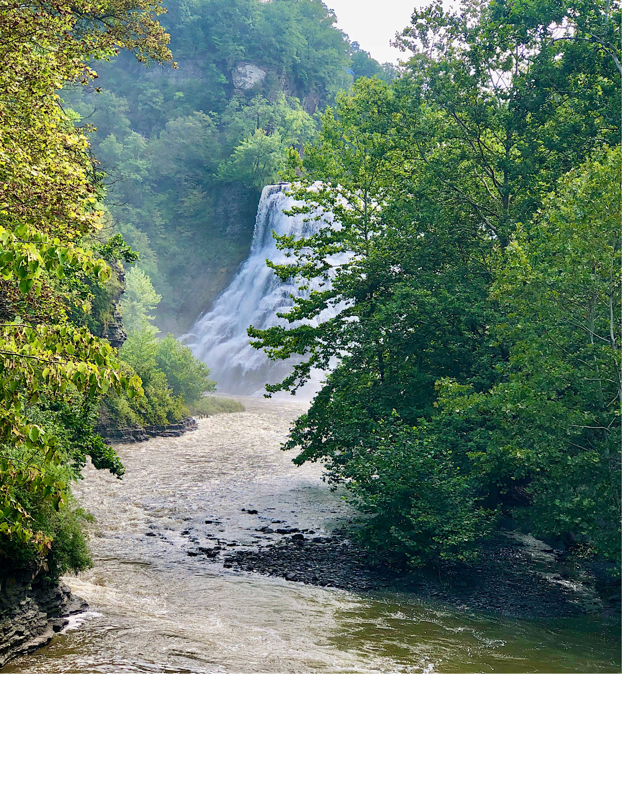 What to do in Ithaca Ny